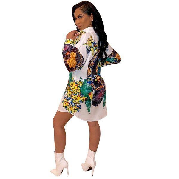 Womens Summer Designer Shirt robes revers col une ligne Folra Imprimer Vêtements pour femmes Fashion Night Club Style Casual Apparel