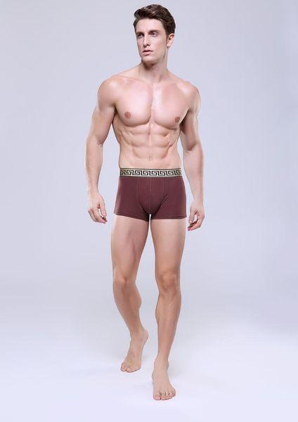 New arrival Black Gold belt coffee ultrathin Stretch Men's Sexy Boxer Underpants Underwear