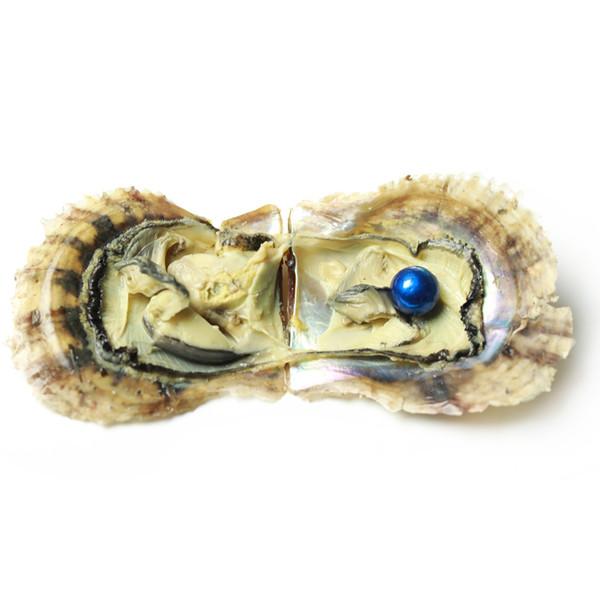 JNMM Edison Wish Pearls en eau de mer Oyster SINGLE Round Wish Wish Perle 11-13mm Perle Couleurs Mixtes DIY Bijoux Making Party Gift