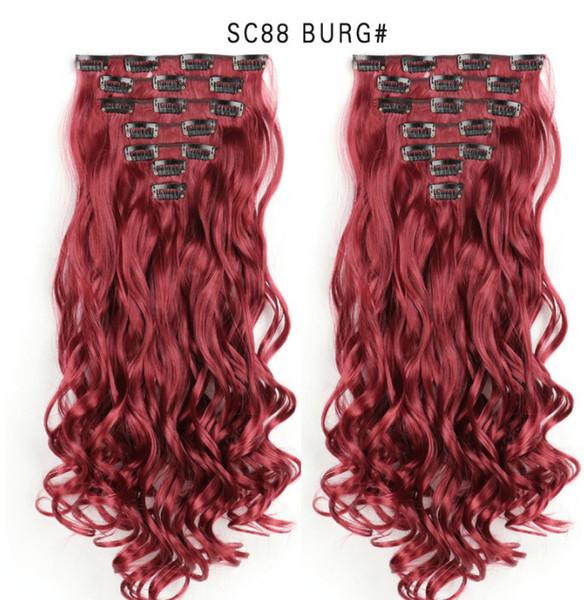 SC88 - BURG