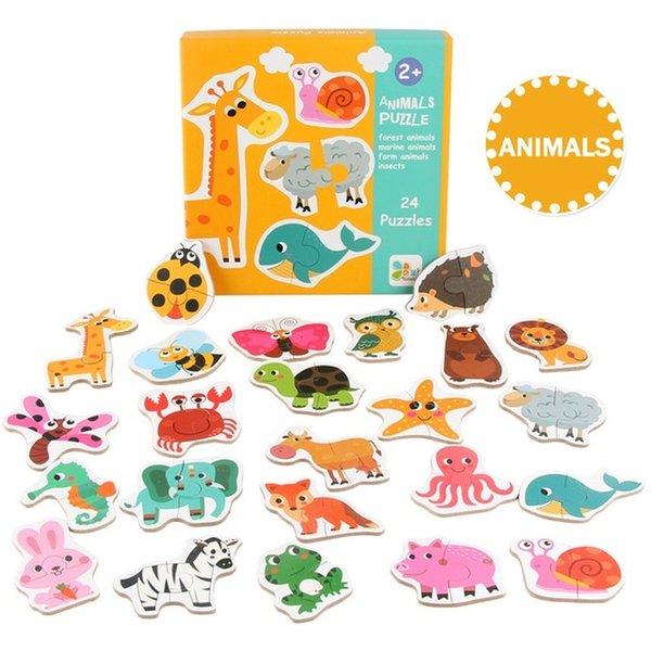 색상 : 동물