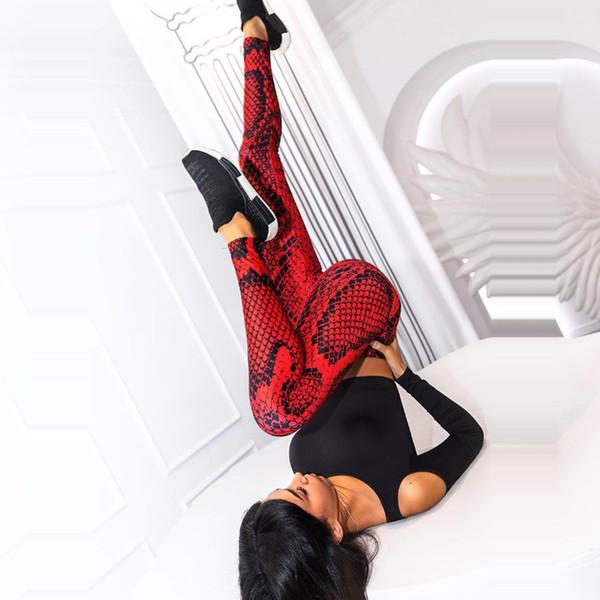 Yılan Baskı Kırmızı Spor Tozluklar Kadınlar Skinny Egzersiz Pantolon Snake Skin Seksi Legging Sweatpants Leguins Mujer Fitness'i Push Up