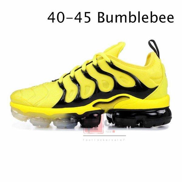 3645- Bumblebee