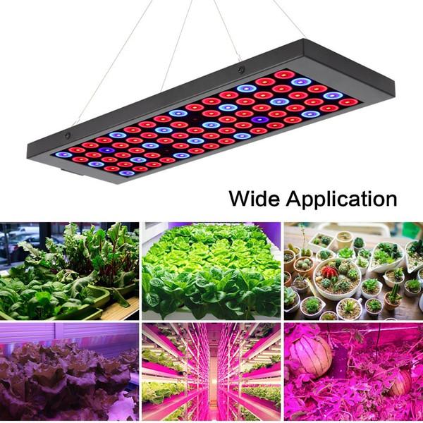 Full Spectrum Led Grow Light 40W Ultra Led Grow IP44 Green houses Lamp Plant Grow Lamp for Veg Flowering Aluminium with DHL shipping