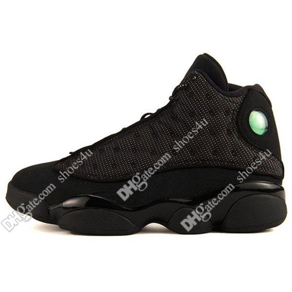 #17 Black Cat