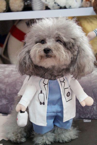 Médico bonito