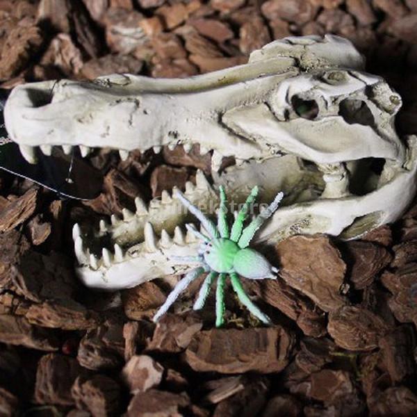 Vivarium reptiles Décoration Hiding Cave aquarium sous-marin Ornement Crocodile Skull
