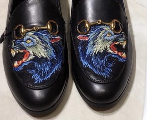 ذئب اسود