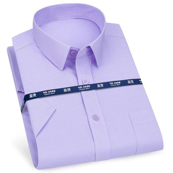 Purple Striola