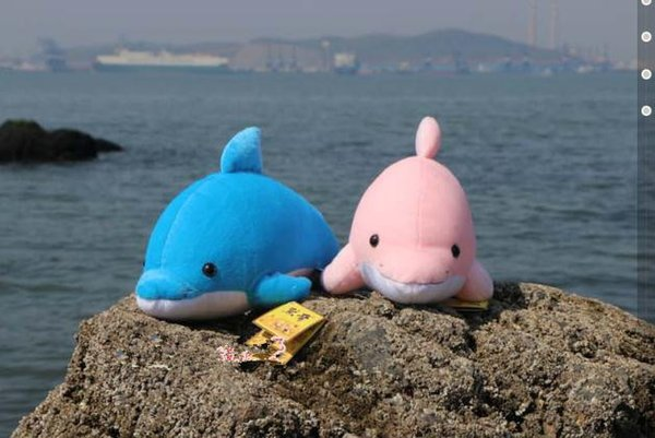 20170618 2019 New Hot Sales Ins Cartoon Cute Simulation Dolphin Creativity Stuffed Animals Gifts Childrens Day Plush Toys