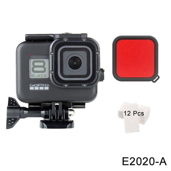 E2020-A