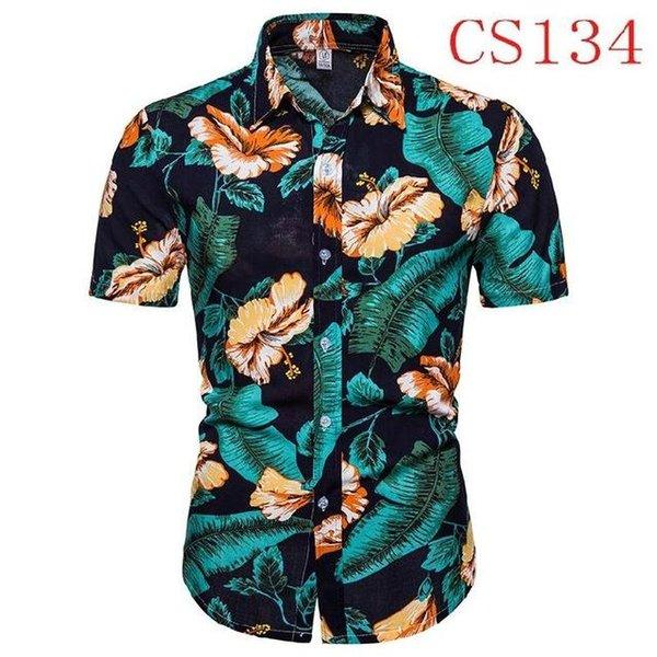 CS134