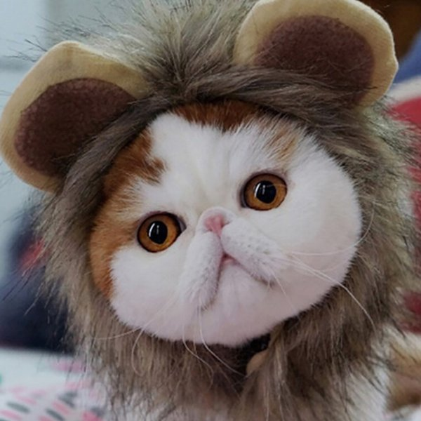 cat funny cute pet costume cosplay lion mane wig cap hat for cat halloween xmas clothes fancy dress with ears garfield hats#p9