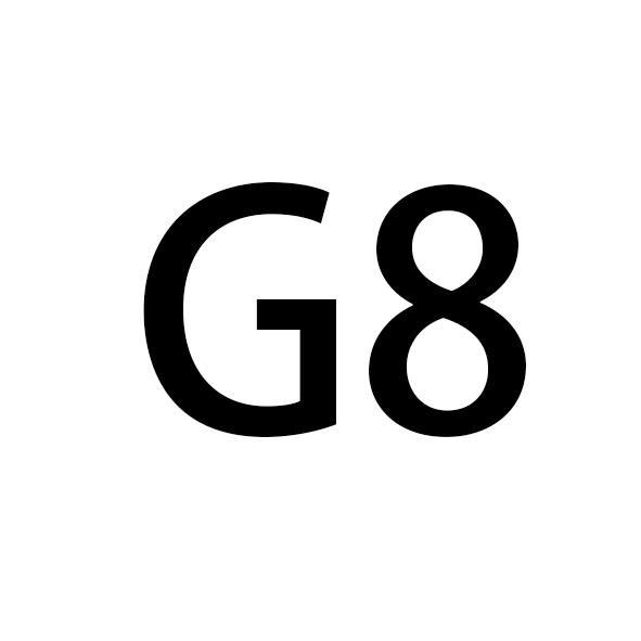 الشريط الأبيض + الأسود G الإبزيم 241