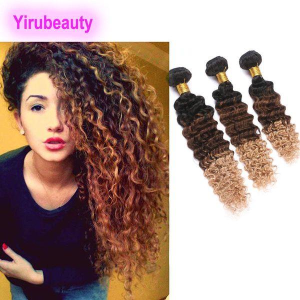 9A Indisches Jungfrau-Haar Yiruhair 3 Bundles Ombre 1B / 4/27 Deep Wave Curly Hair Extensions Drei Töne 8-28 Zoll