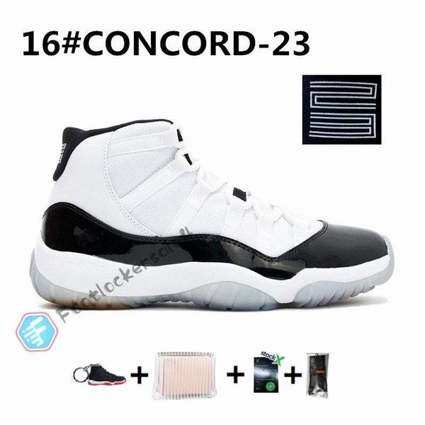 11s-Concord 23
