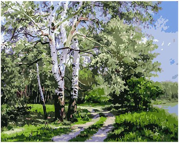 """Kits Paint Adult Hand Painted Oil Paint DIY Painting By Numbers-Woods landscape poplar 16""""x20"""""""