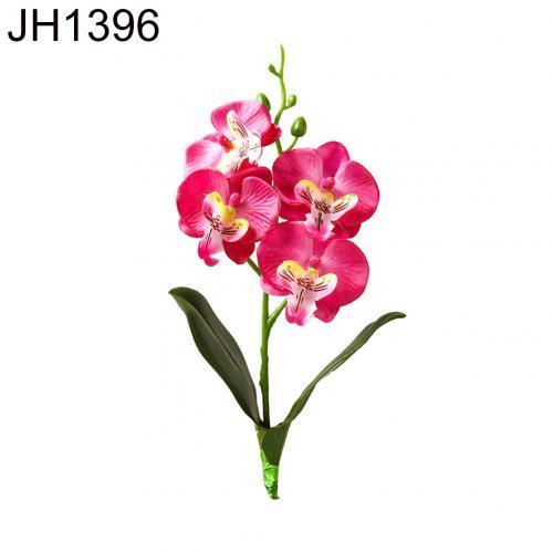 JH1396