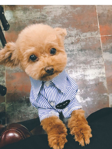 Fashion Short Sleeve Pet T-shirts Tide Brand Cute Ragdoll Teddy Apparels Small Dog Cat Fashion Clothing