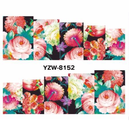 YZW8152