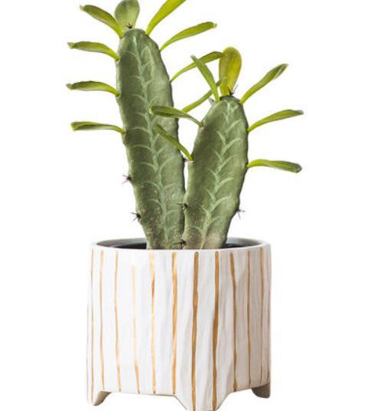 East Africa element vase modern minimalist home jewelry decoration flower arrangement living room TV cabinet decoration crafts furnishings