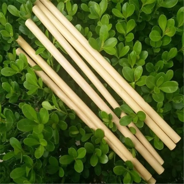 Natural Bamboo Drinking Straws Juice Water Beer Straw Reusable Eco Friendly Tubularis For Party Birthday Wedding 2018120704