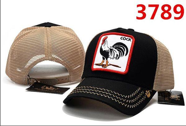 2019 yeni pet hayvanlar beyzbol şapkası gorras hip hop sokak moda kişilik yüksek kalite moda stil hayvan horoz şapka kemik casquette