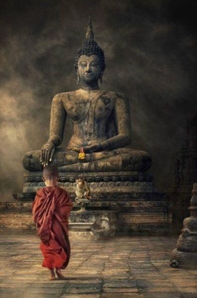 Young Monk Boy Walking up to Buddha Art Silk Print Poster 24x36inch(60x90cm) 088