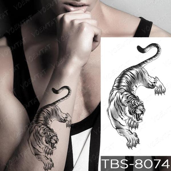 14-TBS8074