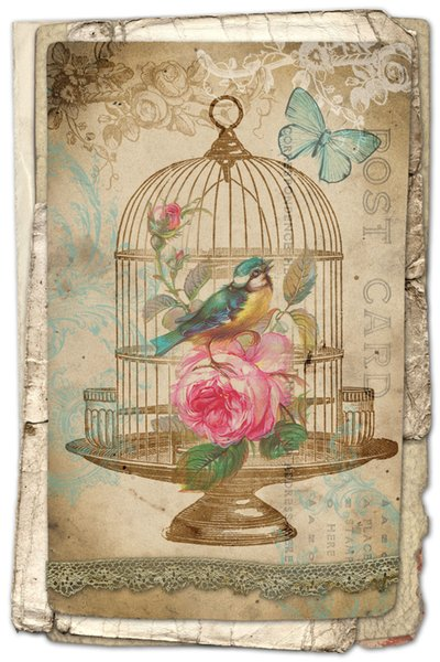 Art Estilo Birdcage Arte Vintage Silk Imprimir Poster 24x36inch (60x90cm) 089