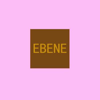 D Ebene Rose Ballerine
