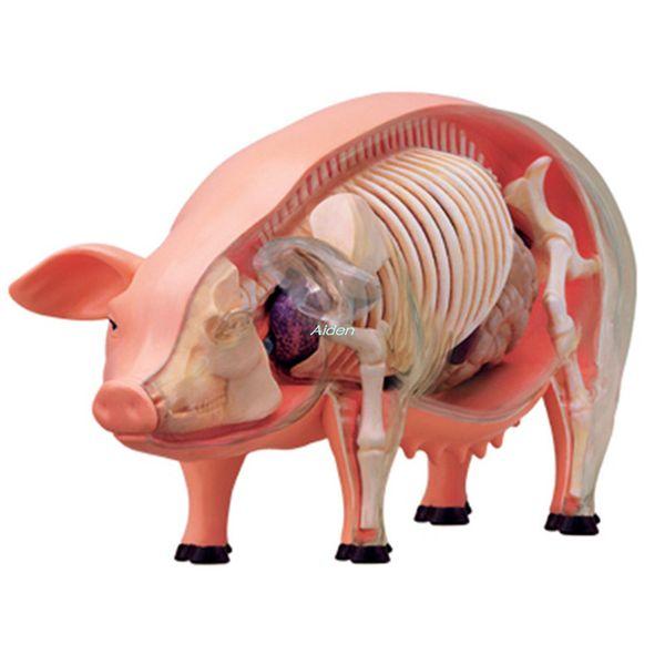 KAWS 4D Master Jason Freeny Fashion Internal Anatomy Pig Transparent Skeleton Creative PVC Action Collectible Model Toy 8.8CM BOX G340