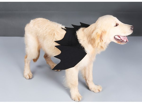 Costume per cani Simpatico costume di Halloween con ali di pipistrello per pipistrelli per cani Cat Kitten, simpatico costume per cani per la decorazione del partito