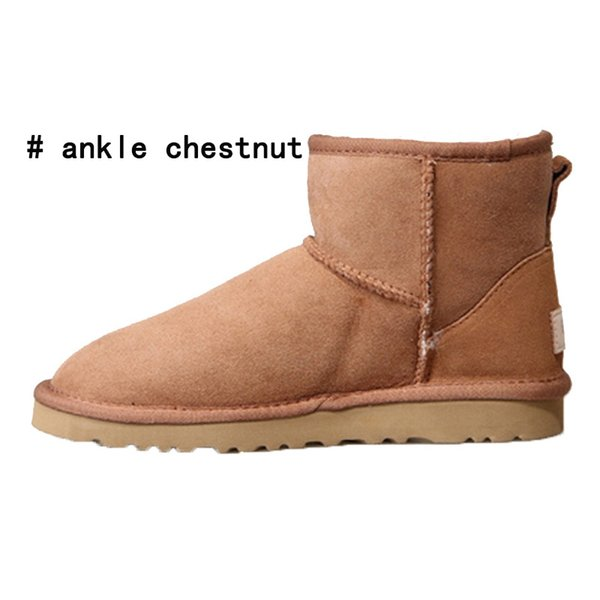ankle chestnut