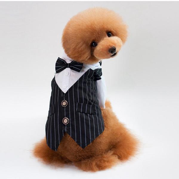 Fashion Stripe Dog Tux con camicia bianca Pet Abiti sposati con cravatta Teddy Bulldog Schnauzer Apparel Abbigliamento di alta qualità