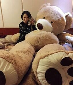 Factory price 200CM Big mouth Teddy bear coat empty toy skin Plush toys Giant toy Dark Brown/Light Brown