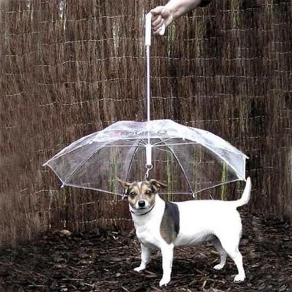 Nützliches transparentes PET-Haustier-Regenschirm-kleiner Hundregenschirm-Regen-Gang mit Hundeleitungen hält Haustier trockenes bequemes im Regnen
