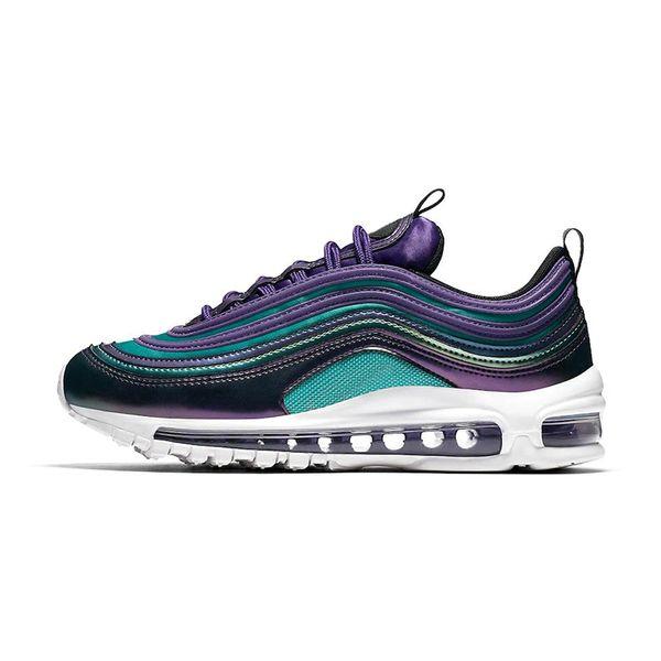 23 Court Purple