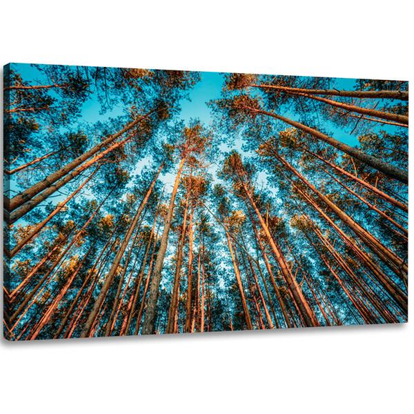 Acheter Toile Mur Art Peintures Pour Le Salon Chambre Decorations Pour La Maison Nature Paysage Image Bleu Ciel Foret Art Imprimer 1 Panneaux De