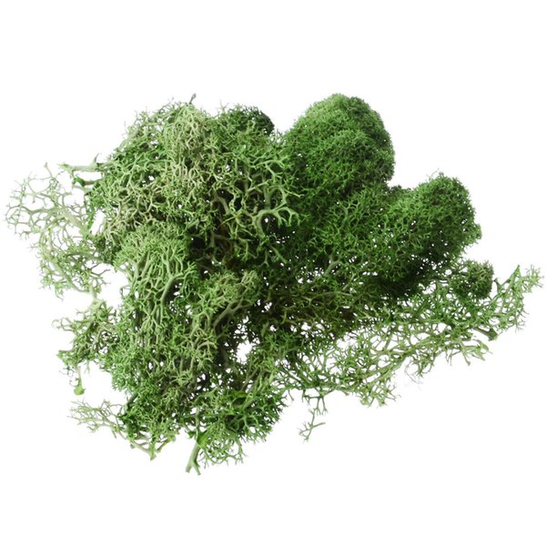 Mayitr 1pcs 10g Creative Artificial Solid Color Fake Moss Grass Plant For Garden Hotel Home Party Diy Craft Decoration C19041702