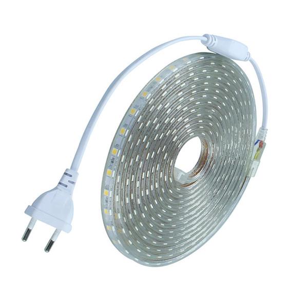 SMD5050 impermeable llevó cinta AC220V tira llevada flexible 60 LED de iluminación de jardín al aire libre / Meter con enchufe de la UE
