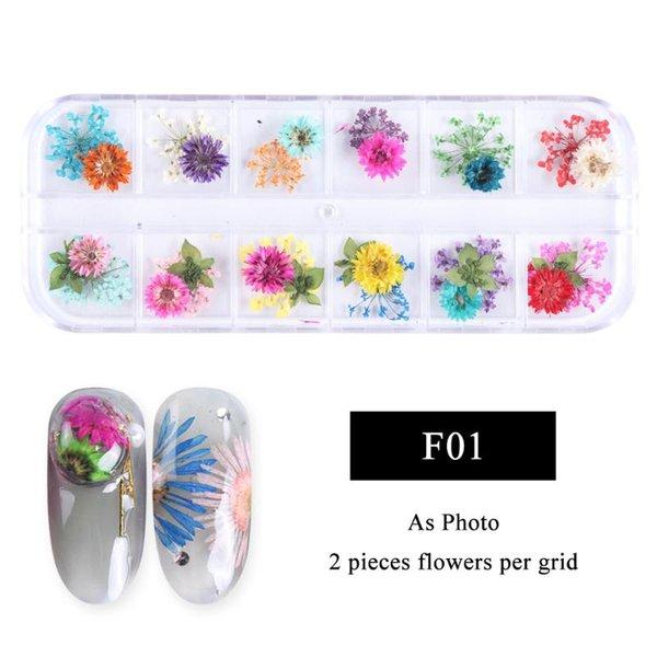 fleur séchée F01