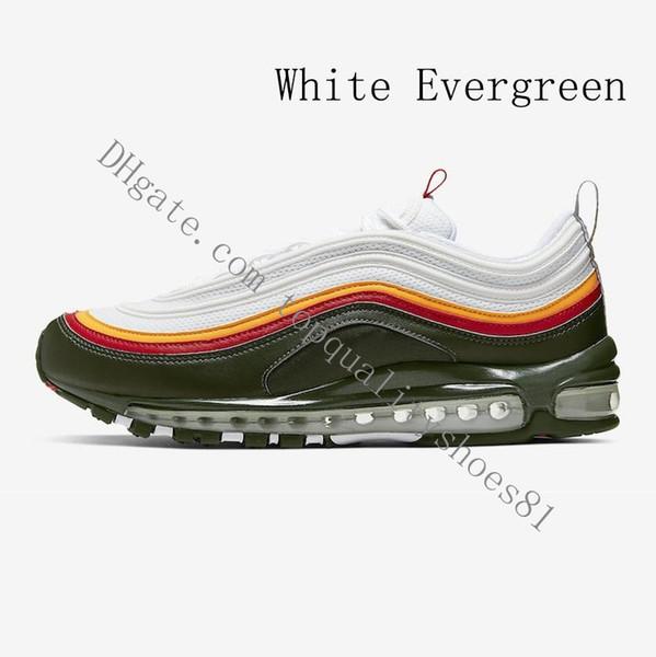 weiß Evergreen