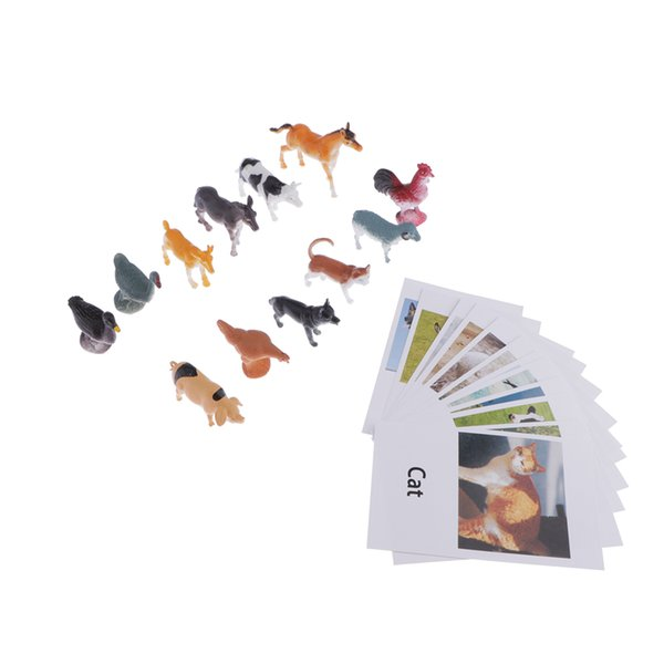 best selling Education Toy Poultry Animals Model Naming Cards For Montessori Education
