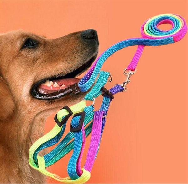 Colorful Rainbow Pet Dog Collar Harness Guinzaglio Soft Walking Harness Piombo Colorato e resistente Traction Rope nylon 120cm c756