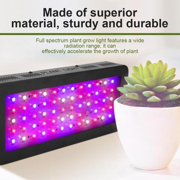 600W LED Grow Light Full Spectrum Plant Grow Light Lamp for Greenhouse Indoor Plants Veg Flower Tent Plants Grow LED Light