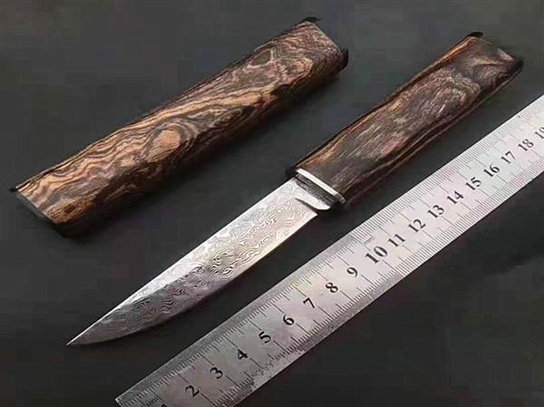 Top qualité Petit Damas Katana fixe Lame de couteau en acier VG10 Damas Goutte Pointe Lame Camphorwood poignée et gaine