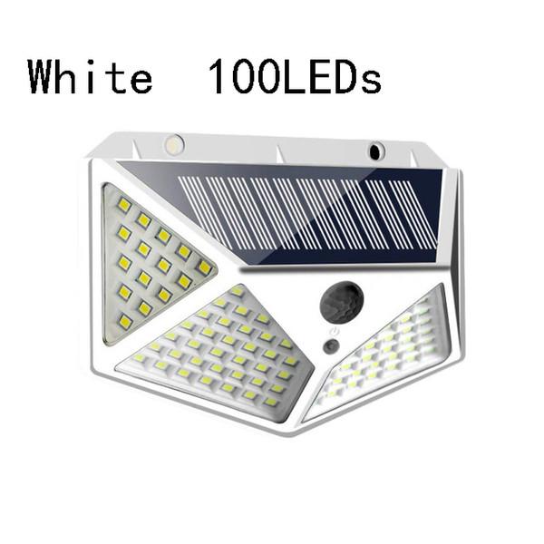 100LEDs Blanc