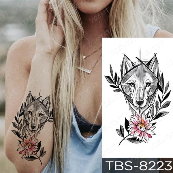 17-TBS8223