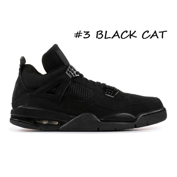 #3 BLACK CAT